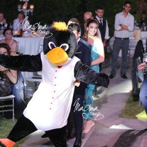 magma-group-penguin-show-cake